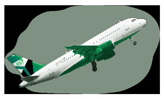 CallCourier_plane